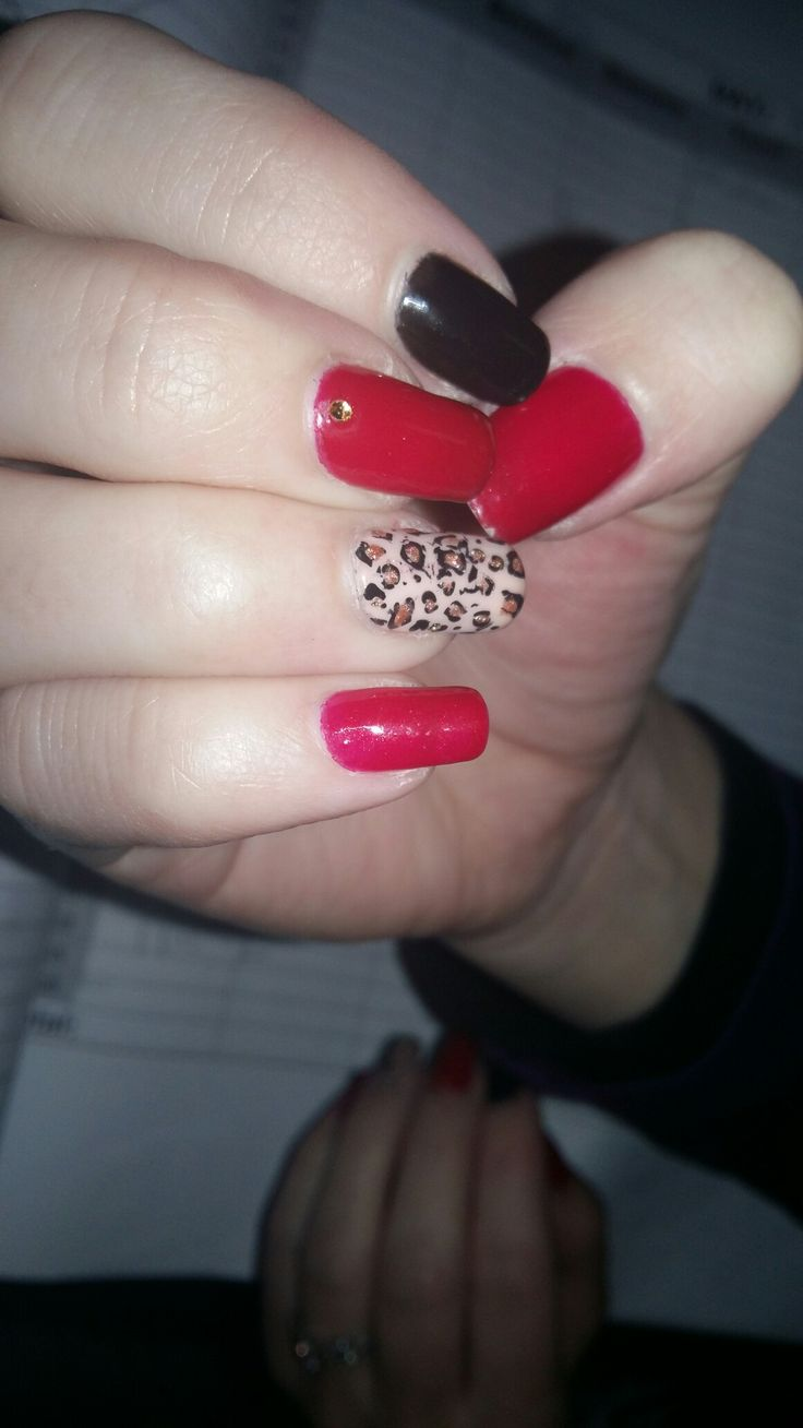 Leopard print nails red black nude nails bio sculpture