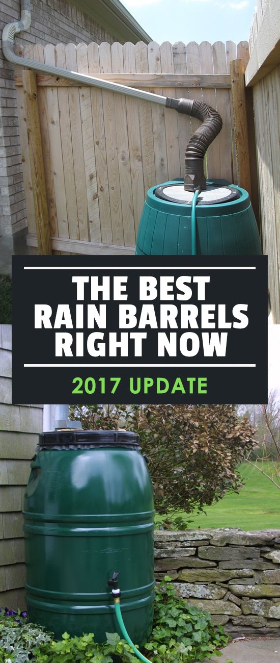 It's important to be resourceful as a gardener, and picking the best rain barrel is one way to do that. Inside, we look at the top rain barrels on the market.