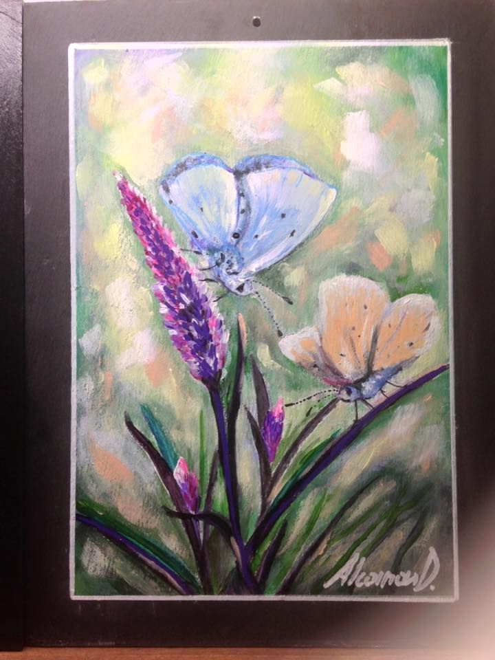 Farfalle dipinte su ardesia cm18x24 euro 50,00