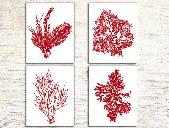 Red Coral, Antique Red Coral, Print Set of four 8x10, Coral Wall Art, Coral Print, Sealife print , Red Coral Prints, Custom Colors