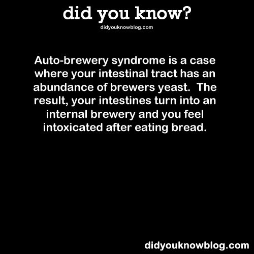 Auto-brewery syndrome is a case where your intestinal tract has an abundance of brewers yeast. The result, your intestines turn into an internal brewery and you feel intoxicated after eating bread. Source