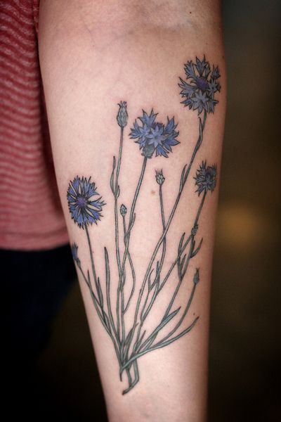 Bachelor's button/cornflower tattoo by Alice Carrier at Wonderland Tattoo in Portland, OR.  http://alicecarrier.tumblr.com http://wond...