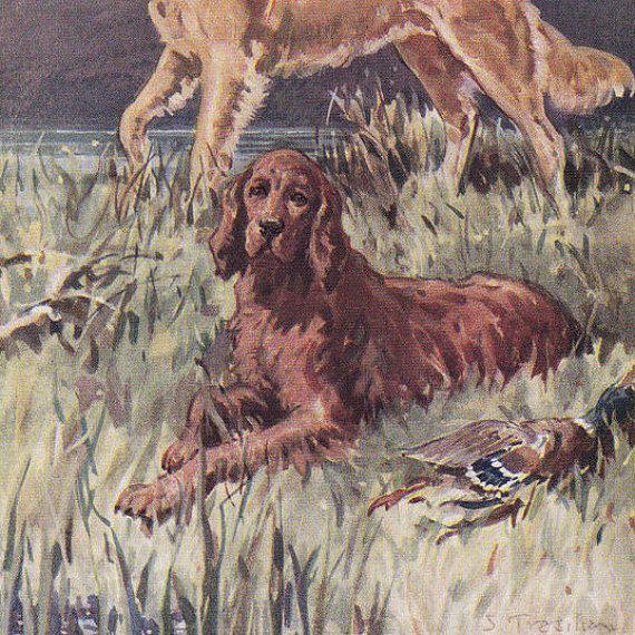 Vintage hond afbeelding afdrukken Golden door FairlyVintagePrints