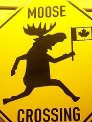I am Canadian ...? - Rogers Bingo