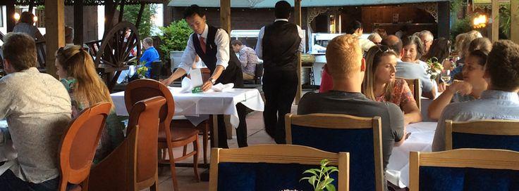 Blue Orchid Thai Restaurant Gardens