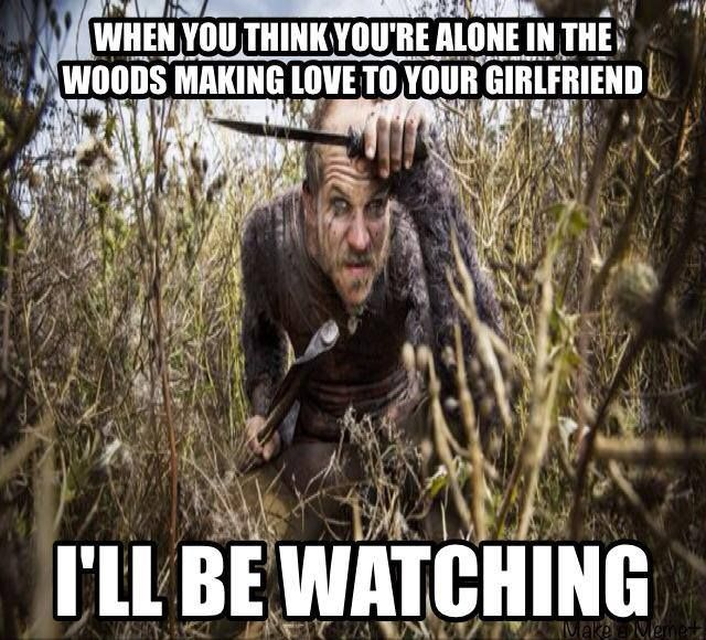 Image result for vikings tv meme