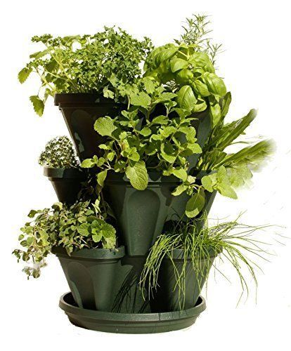 1000 Ideas About Vertical Planter On Pinterest Diy