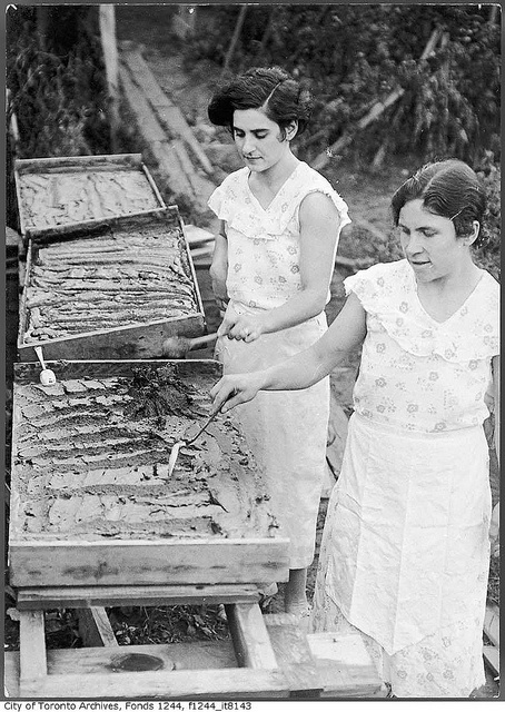Two women making tomato paste in their backyard, Toronto, c. 1936. #vintage #Canada #1930s