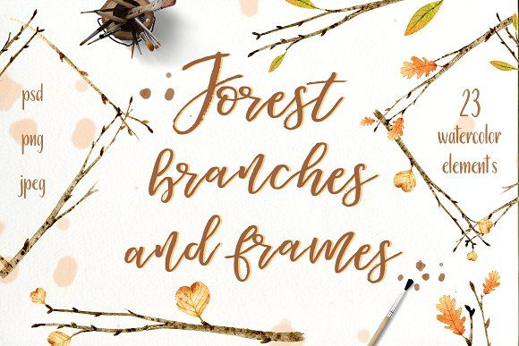 Forest branches and frames by IrinaUsmanova on @creativemarket