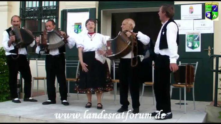 Musiker mit alten Instrumenten Hajos 2014 gemeinsam und Gesang