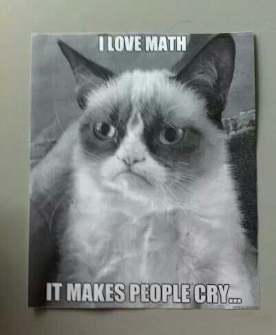 Grumpy Cat | Cat of Grumps | Pinterest | Math, I love math ...
