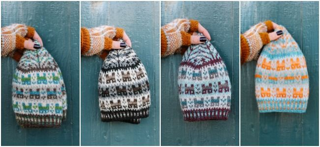 2016 Shetland Wool Week Free Hat Pattern available! http://www.shetlandwoolweek.com/free-knitting-pattern/