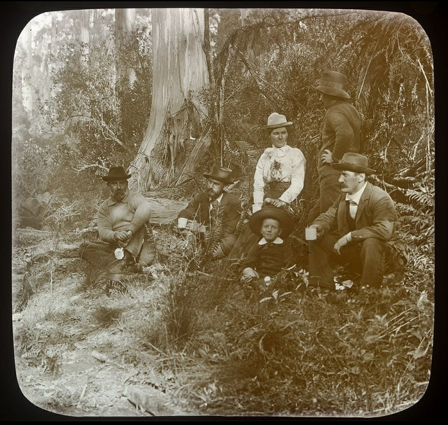 In Cape Otway Forest ca. 1875-ca. 1938  Shows picnic in the bush, four men, one woman and a child sitting in group and another image of two women on dirt road winding through the bush.    From the Series: J.H. Harvey collection.; Melbourne and country Victoria.    Visit our catalogue to download a hi-res copy or find out more about this image: