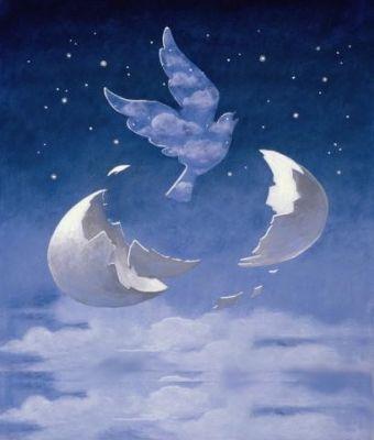 La colombe, symbole de paix