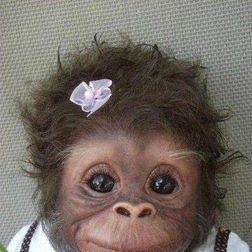 baby monkeeeeeey: Baby Monkey, Cute Baby, So Cute, Pet, Cuti, Babymonkey, Baby Animal, Funnies, Smile