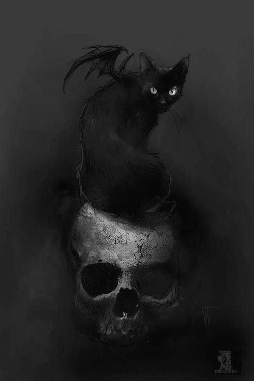 "pixography: "" Nat Jones ~ ""The Black Cat II"" """
