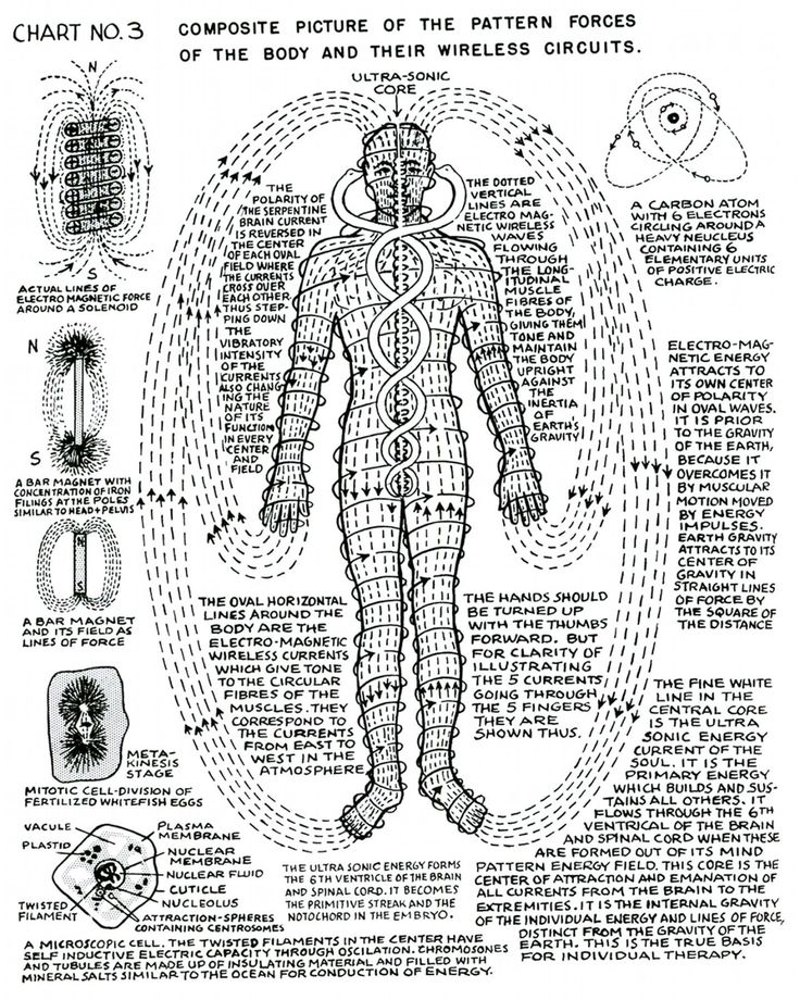 """Our Pathway to the Truth • lucifelle: Polarity Therapy Charts 1-10""""The..."""