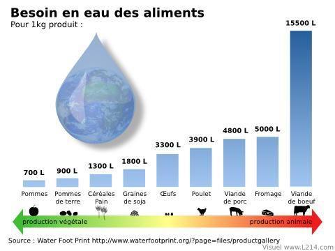 grafico consumi acqua