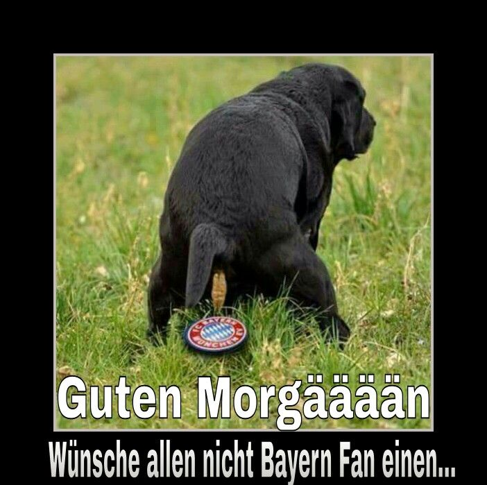 Guten Morgääään scheiß Bayern München