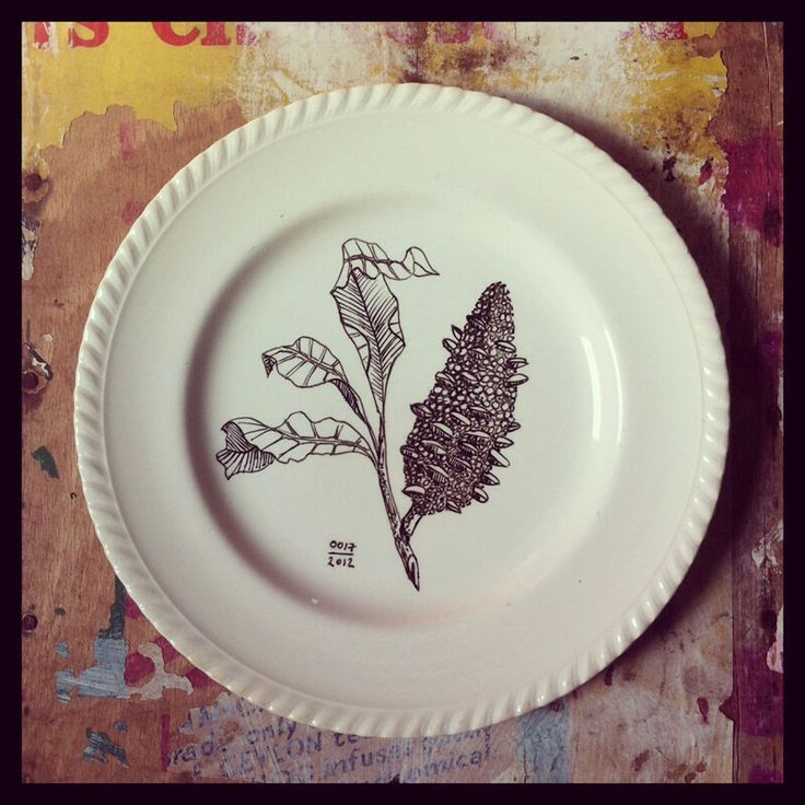 Botanical on plate