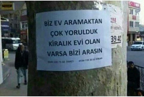 Dünyanın en haklı isyanı  #kiralikev #makara #casper #mizah #siirsokakta #şiirsokakta #ogrenci #ogrenci #müzik #turkey #türk #erkekler #kizlar #kırkır #caps #karikatur #yazi #hikaye #roman #kitap #huzur #topluluk #resim #söz #kitap http://turkrazzi.com/ipost/1518147056869619648/?code=BURirRphLfA