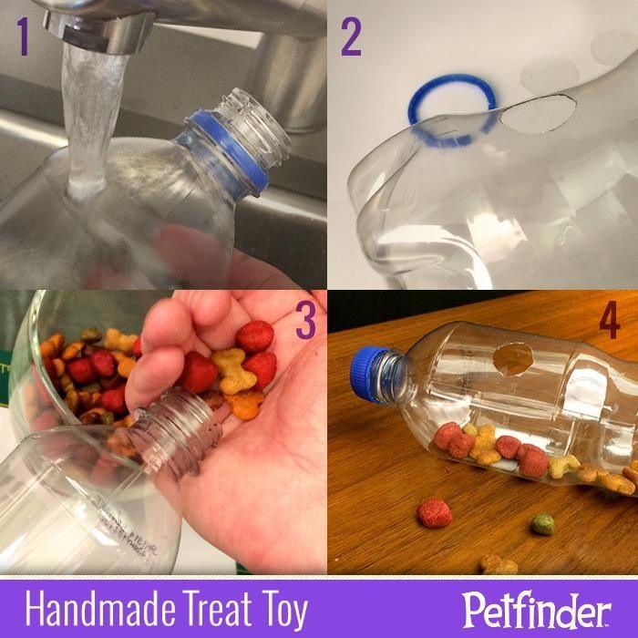 Homemade pet toy soda bottle treat dispenser