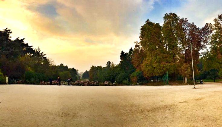 Alcune foto scattate qualche giorno fa al Parco Sempione.