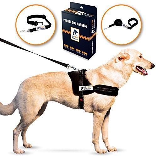 Padded Dog Harness Set: No More Struggling! Easy & Full Control With a Durable No-Pull Harness Comfortable for Your Pet Black - Large. Reflective & Washable. Includes a Leash and a Car Seat-Belt