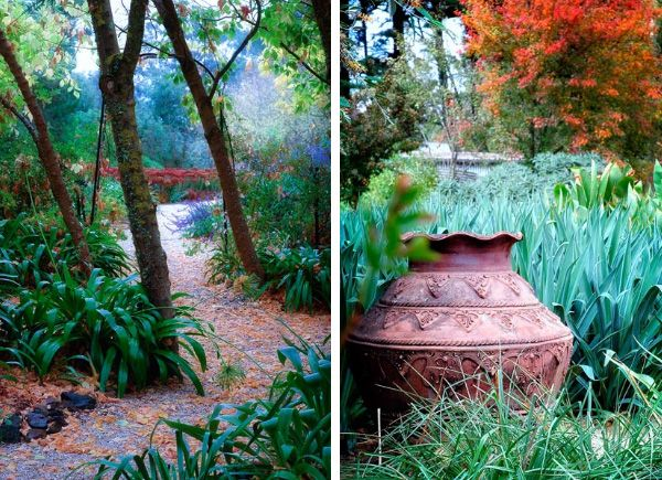 18 best Drought Tolerant Beautiful Gardens images on Pinterest