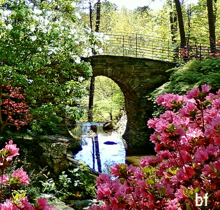 Garvan Woodland Gardens In Hot Springs Arkansas Garvan