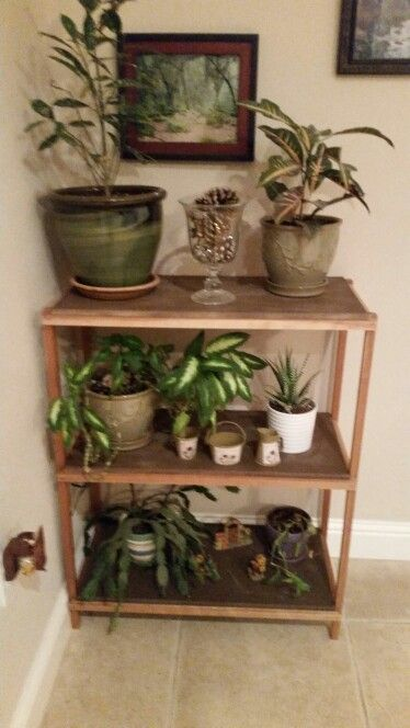 Scrap wood plant shelf | Robert's finished projects | Pinterest ...