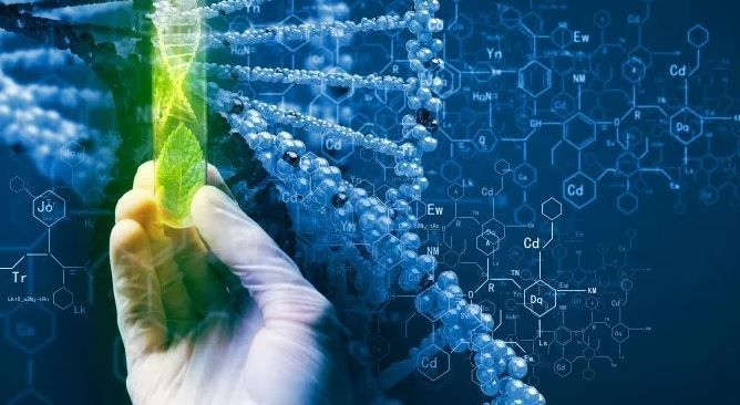 Branches Or Classification Of Biotechnology Forensic Science Forensic Science Detective Life Science In 2020 Biotechnology Biotechnology Careers Biotechnology Lessons