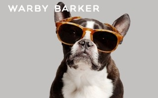 We're pretty sure there's NOTHING better than a pup in sunglasses!Dogs Eyewear, Canine Eyewear, 2Modern Blog, Parker Rai, Hipster Dogs, Warby Parker, Doggie Glasses, Rai 60, Warby Barker