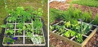 Výsledek obrázku pro zeleninová zahrada