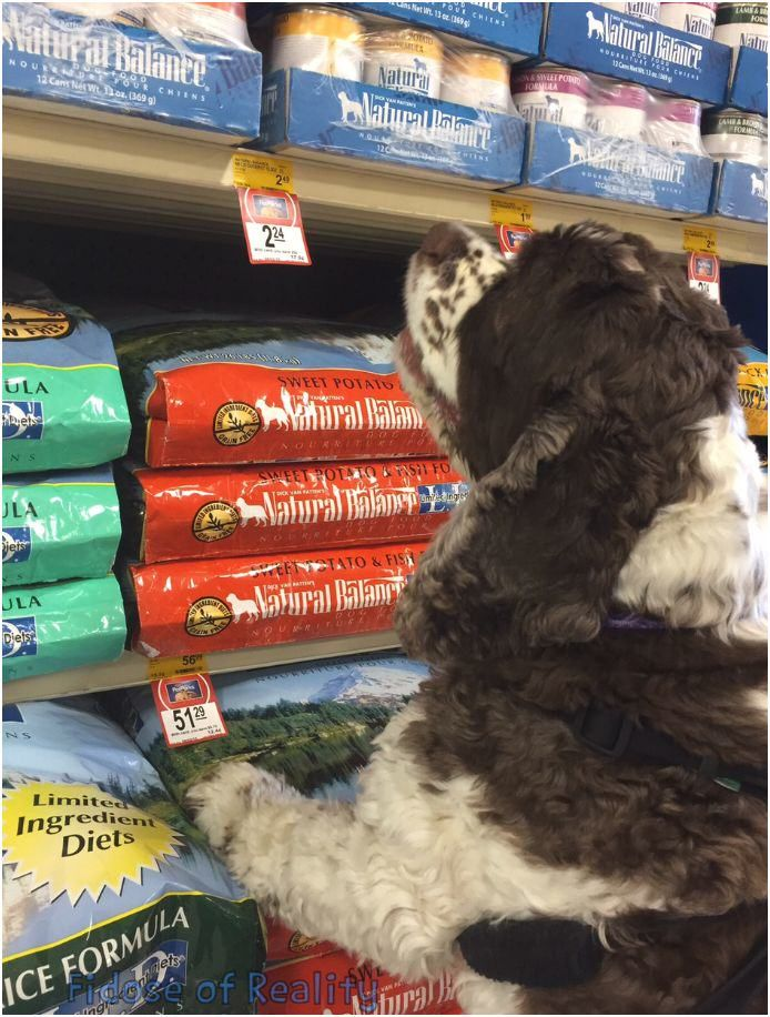 Surprise A Dog With the Gift of Natural Balance #PetSmartStory - Fidose of Reality