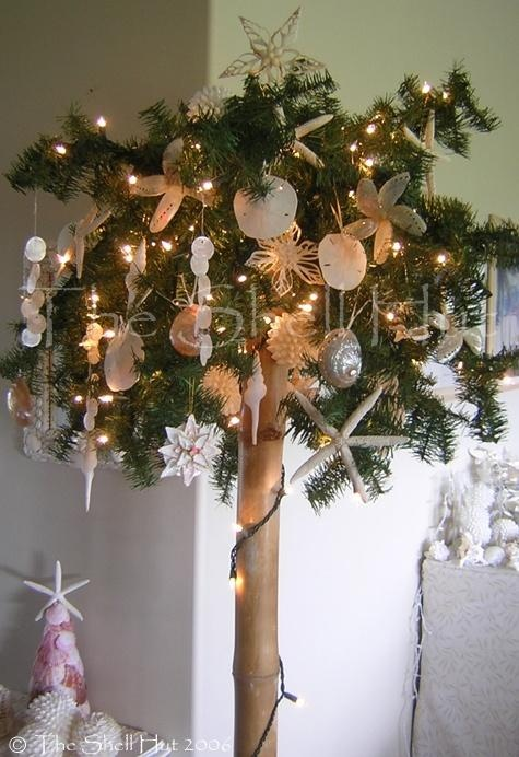 17 best images about tropical christmas on pinterest for Miniature tree decorated with sea shells