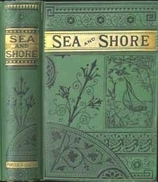 "Sea and Shore by Catherine A. Warfield in 1876 - a sequel to ""Miraim's Memoirs"""