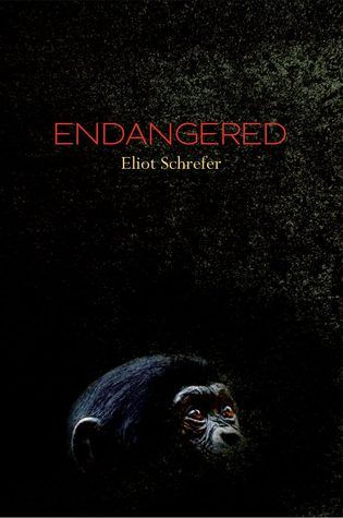 images about TLT Book Reviews on Pinterest   Home for     TLT  Teen Librarian     s Toolbox  Book Review  Endangered by Eliot Schrefer