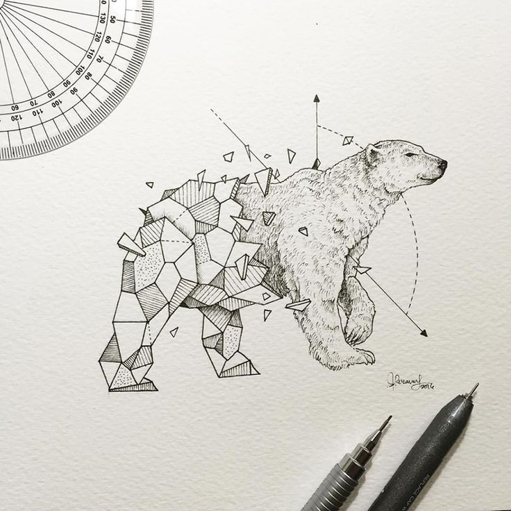 There really is geometry in everything. Just look at this print by artist Kerby Rosanes, who makes the most wonderful, inspiring geometric illustrations of animals.