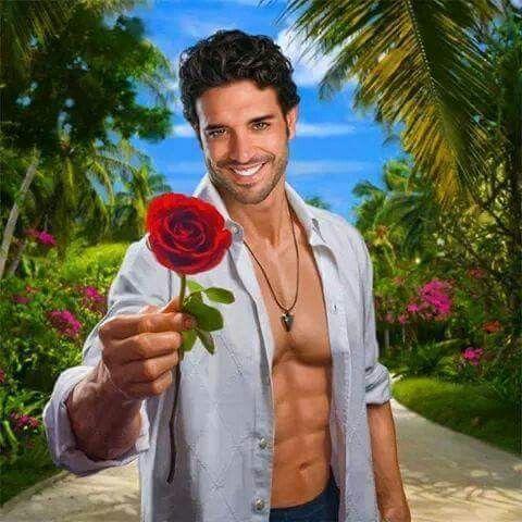 Rózsa kézben
