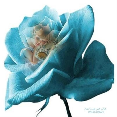 Blue rose girl cute sweet adorable things that make u for How are blue roses made