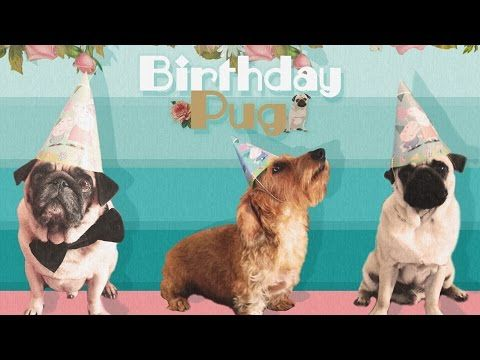 The Perfect Happy Birthday Rap E Card - YouTube