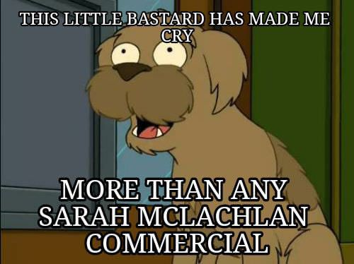 I realized this after watching Futurama…