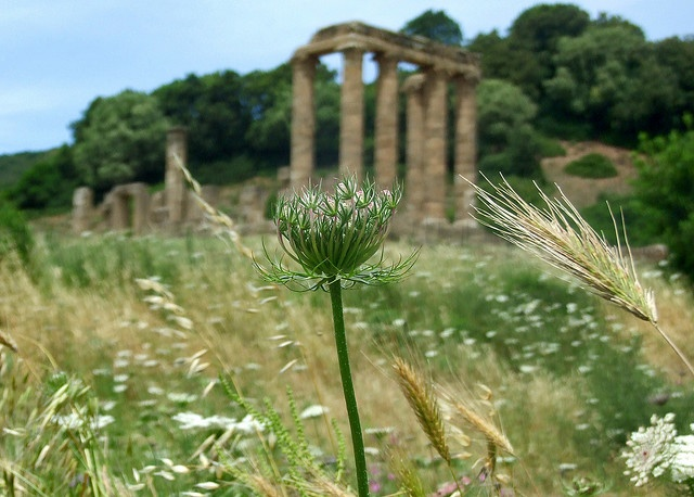 Antas' Temple