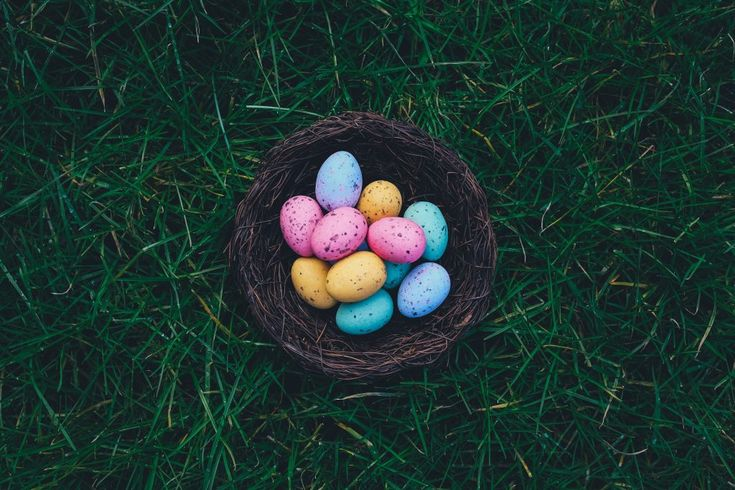 Download this free photo here www.picmelon.com #freestockphoto #freephoto #freebie /// Colorful Easter Eggs | picmelon