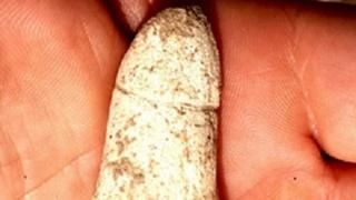 Alguns traços marcantes da vida na Idade da Pedra foram desenterrados recentemente no norte de Israel, incluindo um poço de sementes de feijão queimadas e uma escultura de um falo que tem mais de 6.000 anos de idade, relatou a Autoridade de Antiguidades de Israel (IAA).