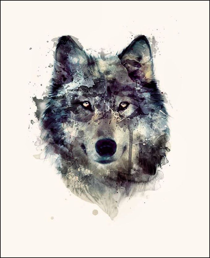 Wolf Iphone Wallpaper: 10 Best Wolf Art Images On Pinterest