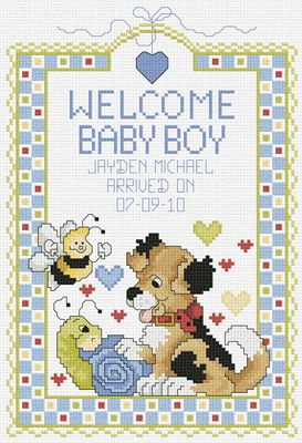 080-0469 CXX Welcome Baby Boy - Janlynn.com