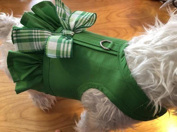 Dog Harness Ruffwear Front Range Dog Harness And Leash Set Large