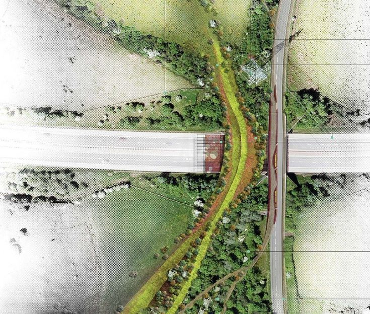 Optimised Environment's bid incorporates bridge will connect two of the sites largest woodlands presently bisected by the M74